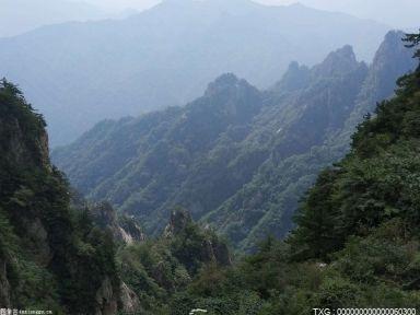 蓝山:1至5月接待游客212.8万人次 同比增长25.6%